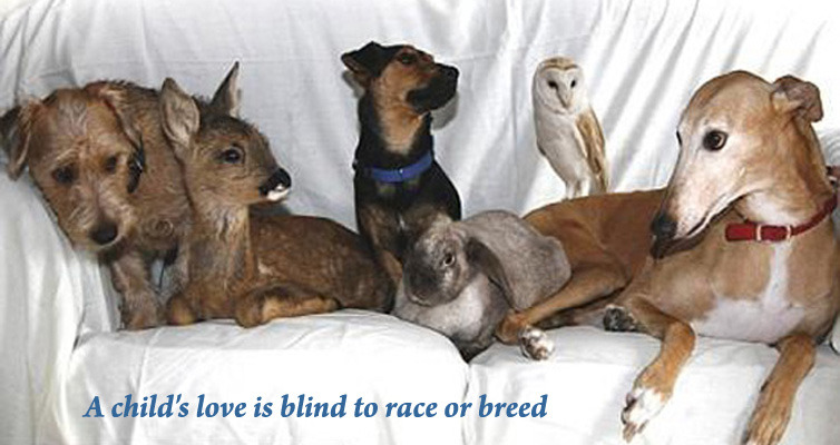 A child's love is blind to race or breed